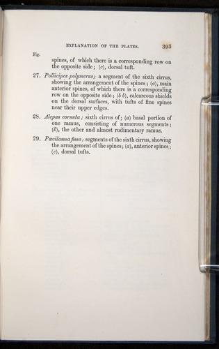 Image of Darwin-F339.1-1851-393