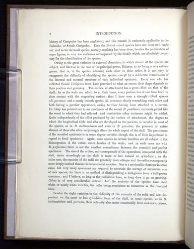 Image of Darwin-F342.2-1854-00002