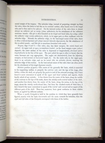 Image of Darwin-F342.2-1854-00011
