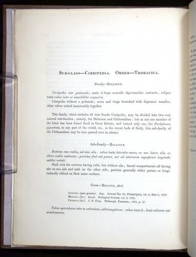 Image of Darwin-F342.2-1854-00012