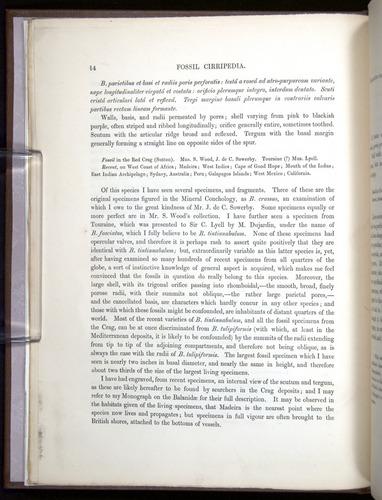 Image of Darwin-F342.2-1854-00014