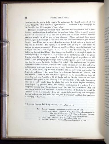 Image of Darwin-F342.2-1854-00024