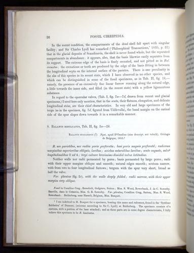 Image of Darwin-F342.2-1854-00026