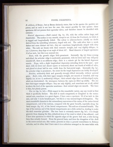 Image of Darwin-F342.2-1854-00032