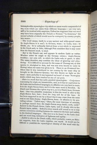 Image of Darwin-F349-1858-Zoologist-v16-05868