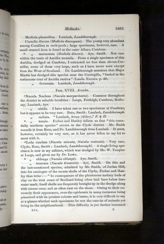 Image of Darwin-F349-1858-Zoologist-v16-05881