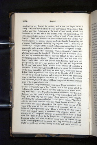 Image of Darwin-F349-1858-Zoologist-v16-05890
