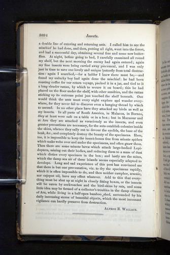 Image of Darwin-F349-1858-Zoologist-v16-05894