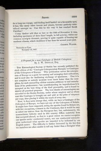 Image of Darwin-F349-1858-Zoologist-v16-05899