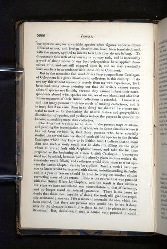 Image of Darwin-F349-1858-Zoologist-v16-05900