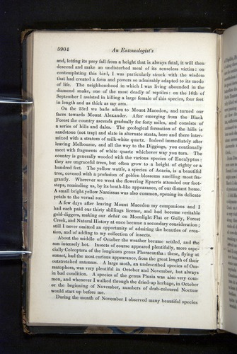 Image of Darwin-F349-1858-Zoologist-v16-05904