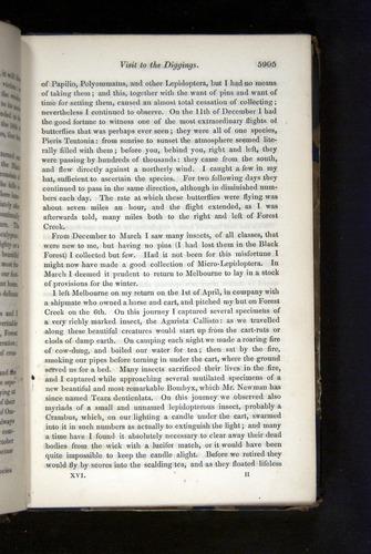 Image of Darwin-F349-1858-Zoologist-v16-05905
