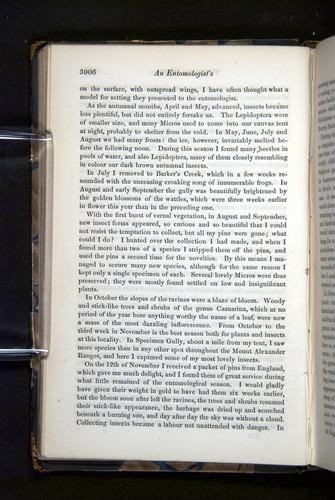 Image of Darwin-F349-1858-Zoologist-v16-05906