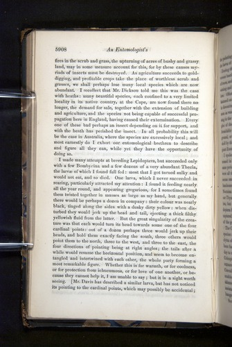Image of Darwin-F349-1858-Zoologist-v16-05908