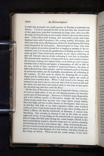 Image of Darwin-F349-1858-Zoologist-v16-05910