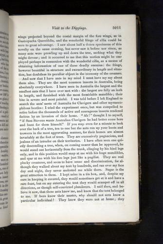 Image of Darwin-F349-1858-Zoologist-v16-05911