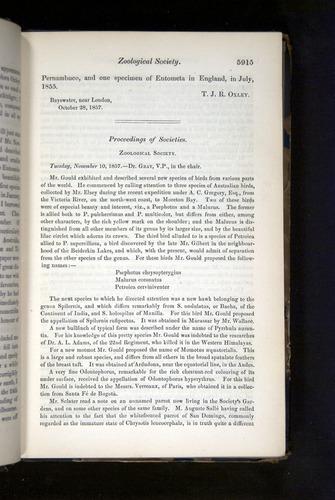 Image of Darwin-F349-1858-Zoologist-v16-05915
