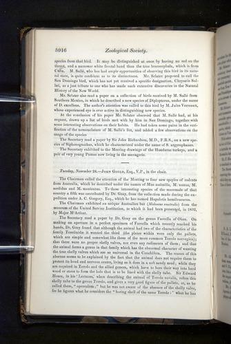 Image of Darwin-F349-1858-Zoologist-v16-05916