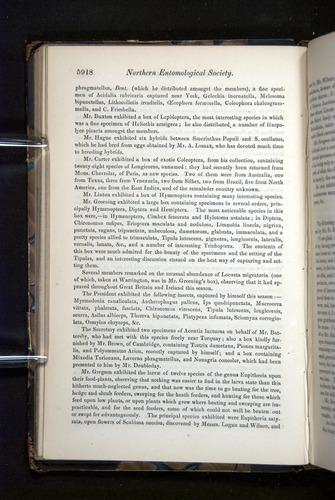 Image of Darwin-F349-1858-Zoologist-v16-05918
