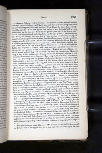 Image of Darwin-F349-1858-Zoologist-v16-05925