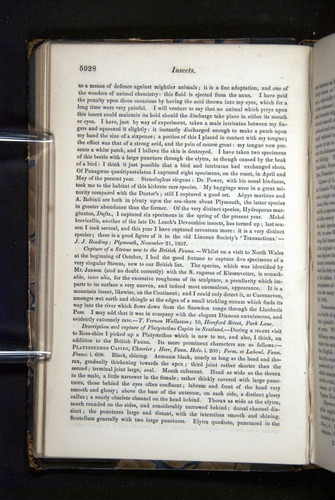 Image of Darwin-F349-1858-Zoologist-v16-05928