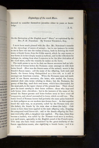 Image of Darwin-F349-1858-Zoologist-v16-05937