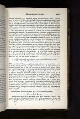 Image of Darwin-F349-1858-Zoologist-v16-05945
