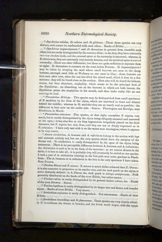 Image of Darwin-F349-1858-Zoologist-v16-05950