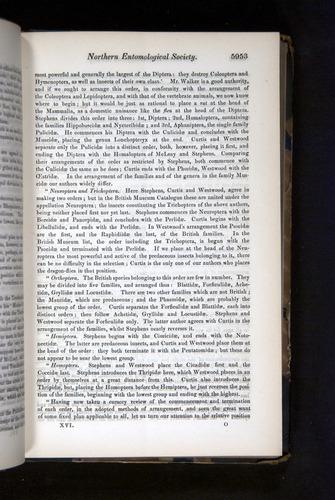 Image of Darwin-F349-1858-Zoologist-v16-05953