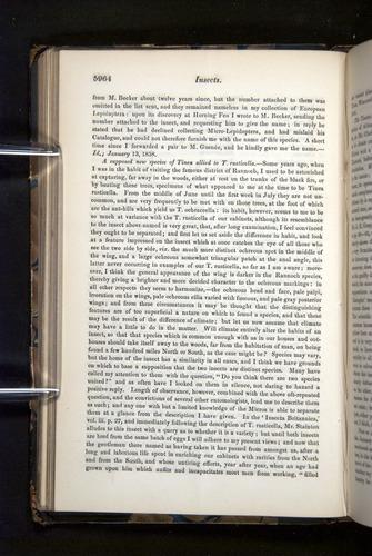 Image of Darwin-F349-1858-Zoologist-v16-05964
