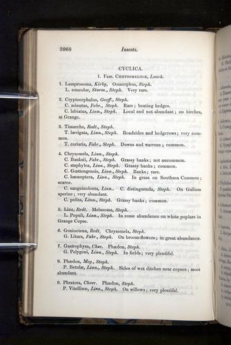 Image of Darwin-F349-1858-Zoologist-v16-05968