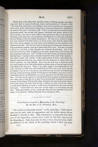Image of Darwin-F349-1858-Zoologist-v16-05977