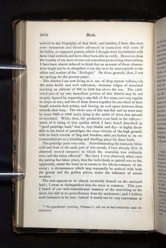 Image of Darwin-F349-1858-Zoologist-v16-05978