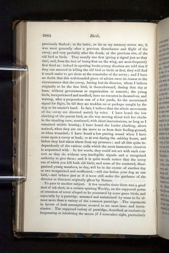 Image of Darwin-F349-1858-Zoologist-v16-05982