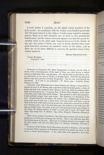 Image of Darwin-F349-1858-Zoologist-v16-05988