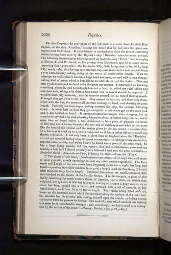 Image of Darwin-F349-1858-Zoologist-v16-05990