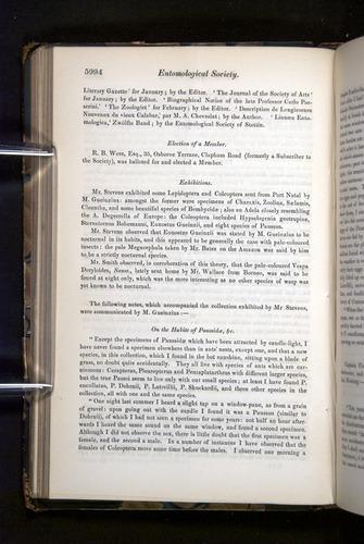 Image of Darwin-F349-1858-Zoologist-v16-05994
