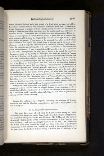Image of Darwin-F349-1858-Zoologist-v16-05995