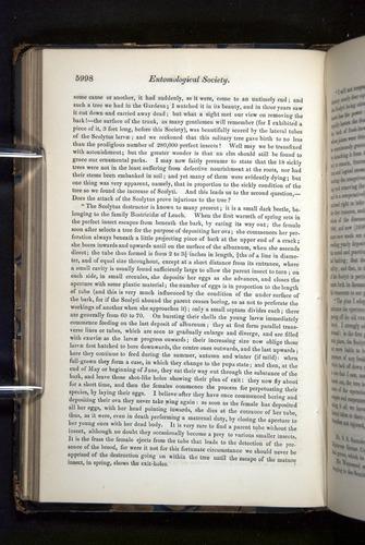 Image of Darwin-F349-1858-Zoologist-v16-05998