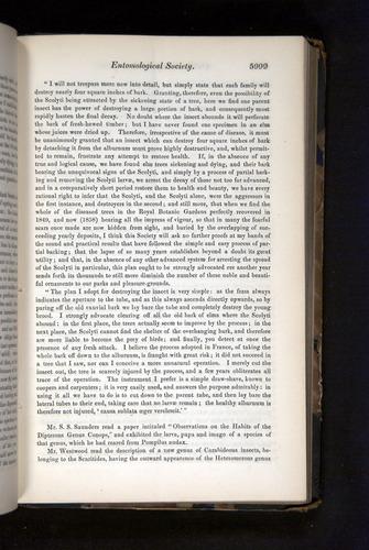 Image of Darwin-F349-1858-Zoologist-v16-05999