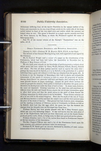 Image of Darwin-F349-1858-Zoologist-v16-06000