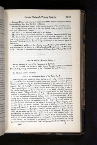 Image of Darwin-F349-1858-Zoologist-v16-06001