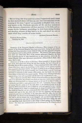 Image of Darwin-F349-1858-Zoologist-v16-06009