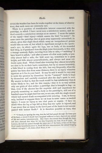 Image of Darwin-F349-1858-Zoologist-v16-06011