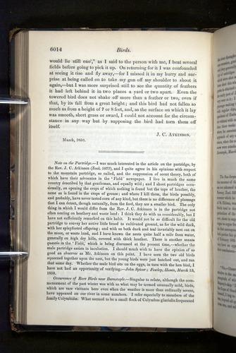 Image of Darwin-F349-1858-Zoologist-v16-06014