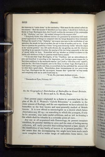 Image of Darwin-F349-1858-Zoologist-v16-06018