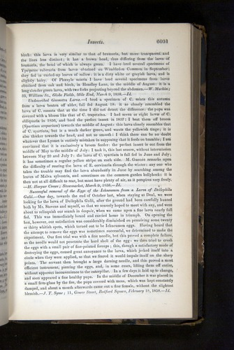 Image of Darwin-F349-1858-Zoologist-v16-06031