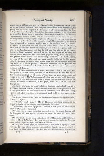 Image of Darwin-F349-1858-Zoologist-v16-06041