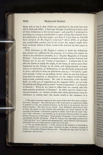 Image of Darwin-F349-1858-Zoologist-v16-06044