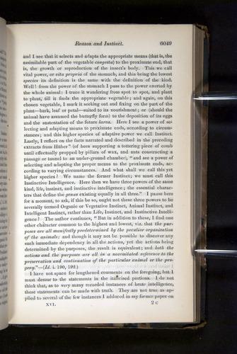 Image of Darwin-F349-1858-Zoologist-v16-06049